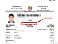 Как сделать визу в Дубай самостоятельно